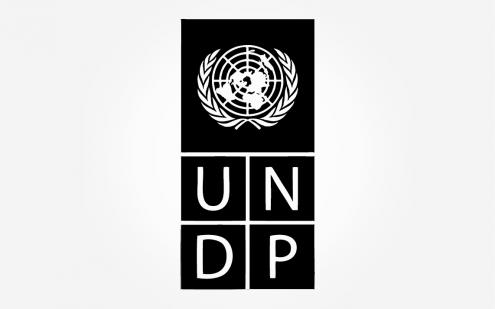 partner_UNDP